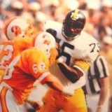 Hall of Fame Defensive Lineman Joe Greene