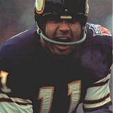 Joe Kapp, Quarterback, 1967-1969 Minnesota Vikings