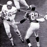 Joe Schmidt of the Detroit Lions