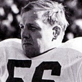 Joe Schmidt of the Detroit Lions