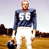 Joe Schmidt, Detroit Lions 1953-1965