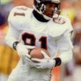 Falcons Receiver Michael Haynes