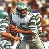 Roman Gabriel, NFL Quarterback
