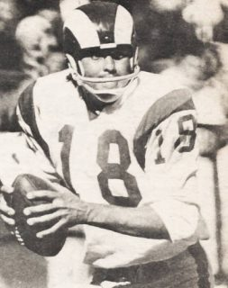 Read more about the article Roman Gabriel