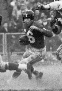 Read more about the article Frank Gifford