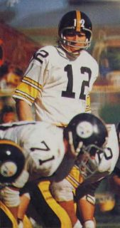 Read more about the article Terry Bradshaw